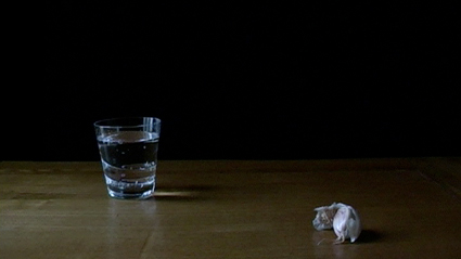Still life with glass & garlic by Joanna Hill