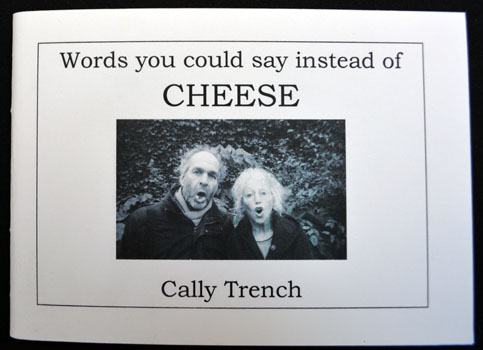 Words you could say instead of CHEESE
