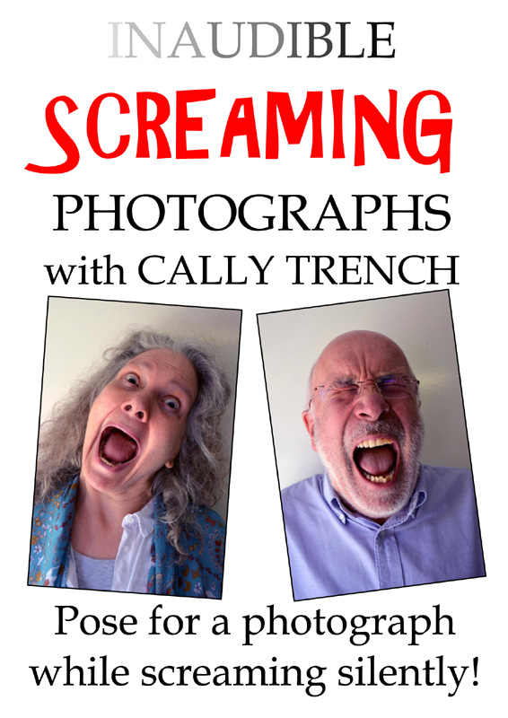 Inaudible Screaming poster by  Cally Trench